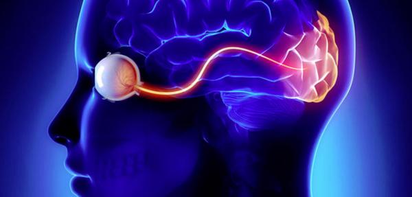 Giả ảo giác: Khi não bộ tìm cách… điền vào chỗ trống -0